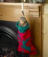 Christmas Stocking Holders