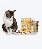 Cat Products & Giftware