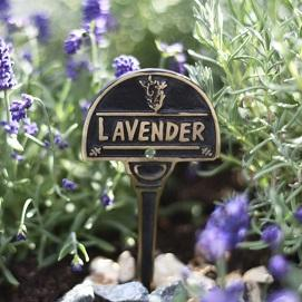 Garden Plant Signs & Markers