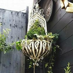 Hanging Baskets & Planters