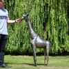 4ft Recycled Metal Giraffe Sculpture to Scale
