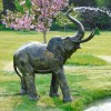 Bronze Elephant Water Fountain in Use