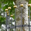Gold Finial Tops On Iron Tree Guard