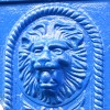 Close up of Lion's head
