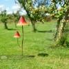 Mushroom Garden Spike 65cm Tall