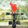 Liver Bird Weathervane in Situ Outside