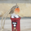 Close-up of the Robin Sitting on the Postbox