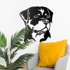 Rottweiler Art in Situ in the Home