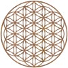 "Geometry ""Flower of Life"" Steel Wall Art in a Rustic Finish"