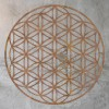 "Geometry ""Flower of Life"" Steel Wall Art on a Rustic Wall"