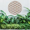 "Geometry ""Flower of Life"" Steel Wall Art Above Bushes in the Garden"