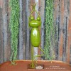 """Back of the """"The Tree"""" Yoga Frog Ornament in Situ"""