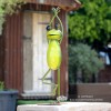 """""""The Tree"""" Yoga Frog Ornament in Situ in the Garden"""