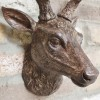 Close up of stag head detailing