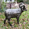 Side view of Standing Ram Sculpture