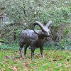 Standing Ram Sculpture in Situ