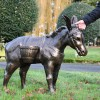 Antique Bronze Travelling Donkey in Situ