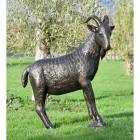 Antique Bronze Billy Goat Garden Sculpture in the Garden