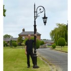 Antique Brown Cast Iron Ornate Swan Neck Lamp Post Scale Shot