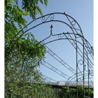 Black archway for cottage garden