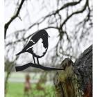 Robin Tree Spike in Tree