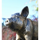 Close-up of the Face of the Piglet Sculpture