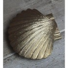 Shell Door Knocker Created Out of Brass