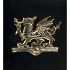 Brass Dragon Motif for post box