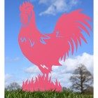 Pink Rooster Silhouette
