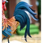 Close-up of the Metallic Finish Tail on the Cockerel