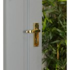 Polished Brass Lever Handle With Key Hole Beside Plants