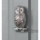 Front View of the Bright Chrome Owl Door Knocker