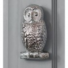 Bright Chrome Owl Door Knocker in Situ on a Grey Door
