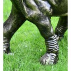 Close-up of the Feet on the Elephant Calf Water Fountain