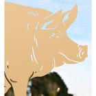 Close up of Sitting Pig Silhouette