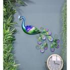 Metallic Glass & Metal Peacock in Situ in the Home
