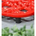 Red Cast Iron Flower Petal Trivet Feet