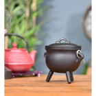 Small Cast Iron Cauldron Finished in Black in Situ