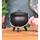 Small Cast Iron Cauldron Finished in Black Scale
