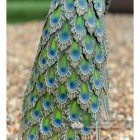 Close-up of the Peacock's Feathers