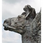 Detailed image of horse