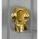 Polished Brass Frog Door Knocker Fitted On Door