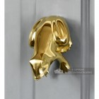 Polished Brass Frog Door Knocker On Grey Door