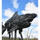 Shark Sculpture Created Out of Car Tyres