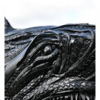 Close-up of the Tyre Car's Finish on the Face of the Shark