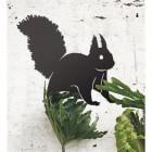 Red Squirrel Wall Art on the Wall Next to Plants