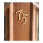 Rustic Copper house numbers on wood door