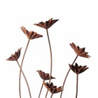 Group of Rustic Flowers