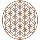 "Geometry ""Flower of Life"" Steel Wall Art in a Rustic Finish"