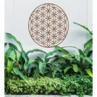 """Geometry """"Flower of Life"""" Steel Wall Art Above Bushes in the Garden"""